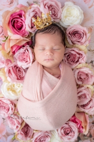 newborn flower photoshoot